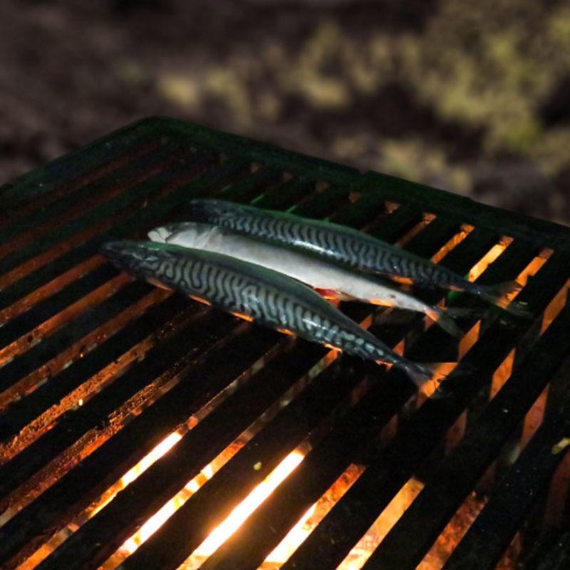 cuisson poissons au barbecue avec les dérivés