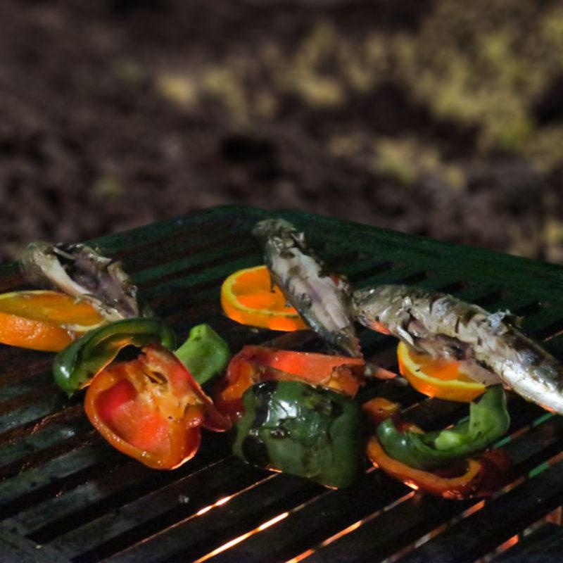 feu de bois pour cuisiner légumes d'été et poissons au bbq avec les dérivés